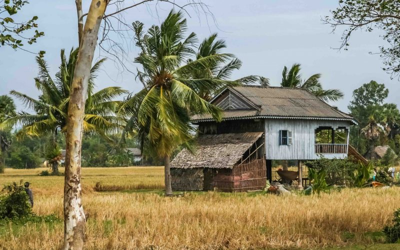 Single primitive wooden house in the tropical rural countryside in the southern part of Cambodia