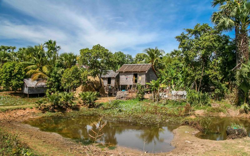 Single primitive wooden house in the tropical rural country in the southern part of Cambodia